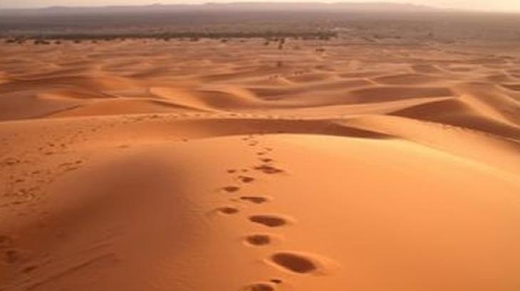 2015-12-22 desierto